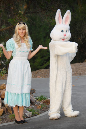 K4K Alice & White Rabbit